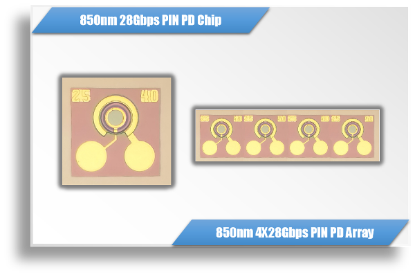850nm 28Gbps / 112Gbps GaAs PD Chip & 1X4 Array