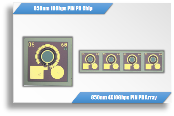 850nm 10Gbps / 40Gbps GaAs PIN PD Chip & Array