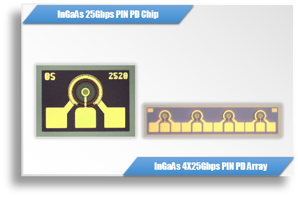 InGaAs 25G /100G PIN PD Chip & 1XN Array